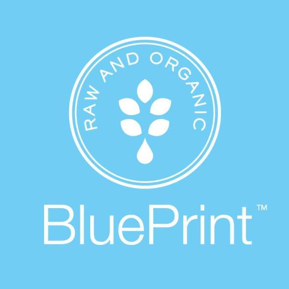 BluePrint Juice 2