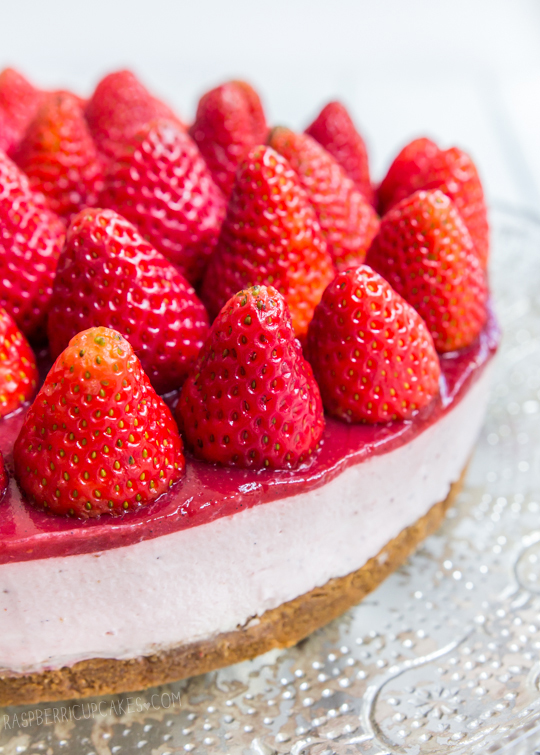 Strawberry Cheesecake with Speculoos Crust